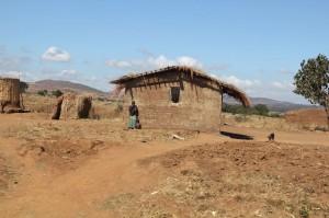 Malawi Hut